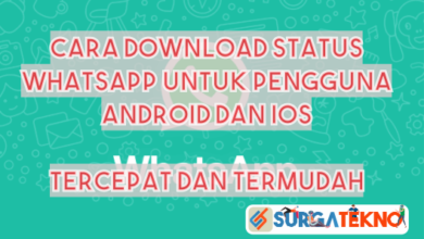 Photo of Cara Download Status WhatsApp Termudah dan Tercepat