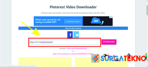 cara download video pinterest dengan experts php