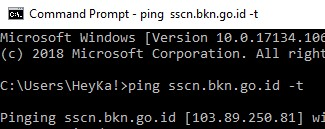 ping server sscn bkn