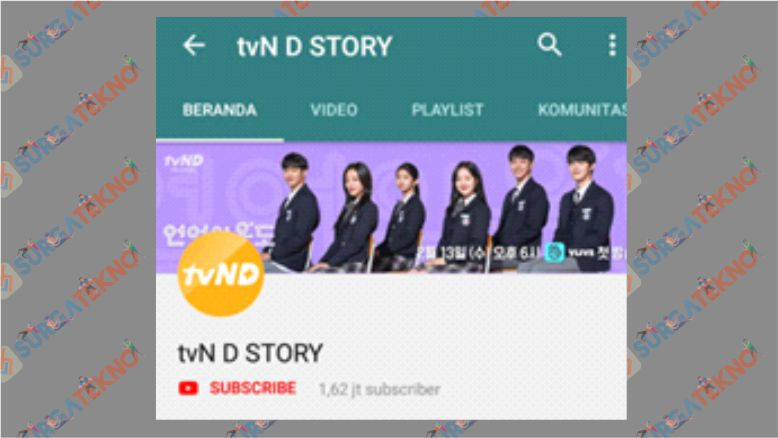 Channel tvN D STORY