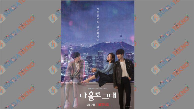 Drama Korea Komedi Romantis Februari 2020 - My Holo Love