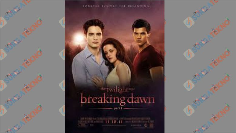The Twilight Saga Breaking Dawn - Part 1 (2011)