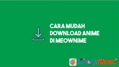 Photo of Cara Download Anime di Meownime