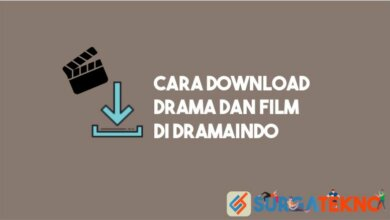 Photo of Cara Download Drama dan Film di Dramaindo