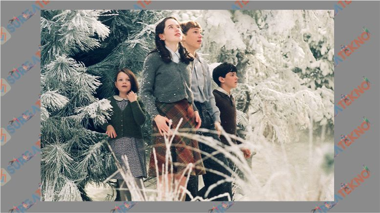 The Chronicles of Narnia - The Lion, the Witch and the Wardrobe (2005)