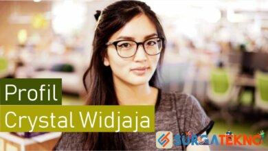 Photo of Profil Crystal Widjaja, Bos Baru Gojek yang Cantik Banget