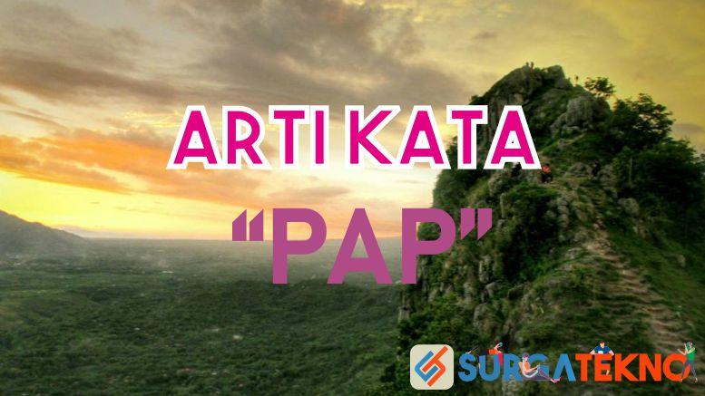 Arti Kata PAP