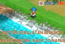Photo of 20 Daftar Peralatan di Harvest Moon : Back To Nature [LENGKAP]