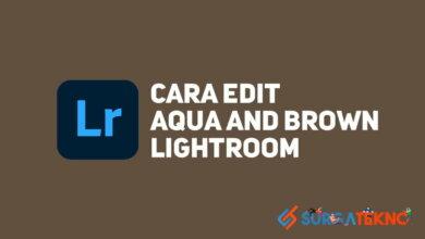 Photo of Cara Edit Foto Preset Aqua and Brown Menggunakan Lightroom