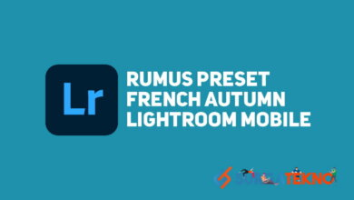 Photo of Cara Menambahkan Preset French Autumn Menggunakan Lightroom
