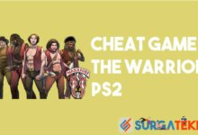 Cheat Game The Warriors PS2