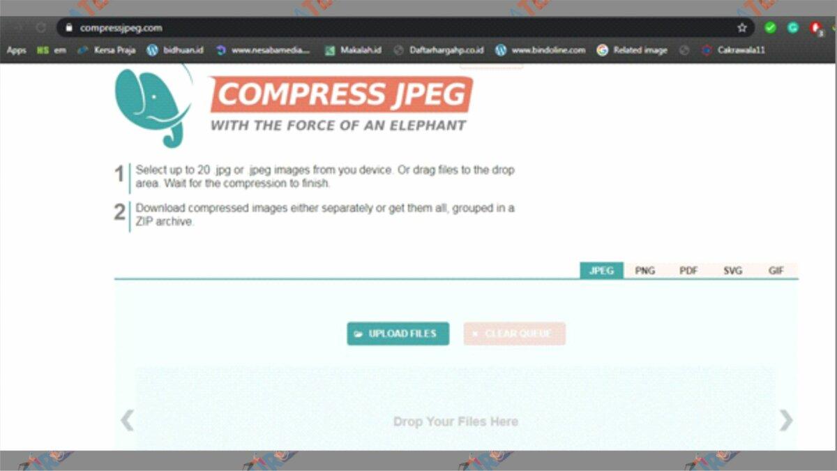 Buka Situs Compress JPEG - Cara Mengecilkan Ukuran Foto Menjadi 200 KB