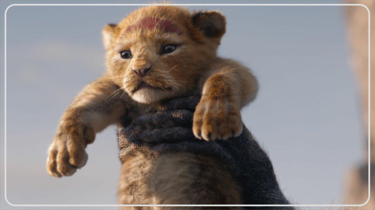 Informasi The Lion King (2019)