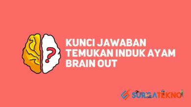 Temukan Induk ayam Brain Out