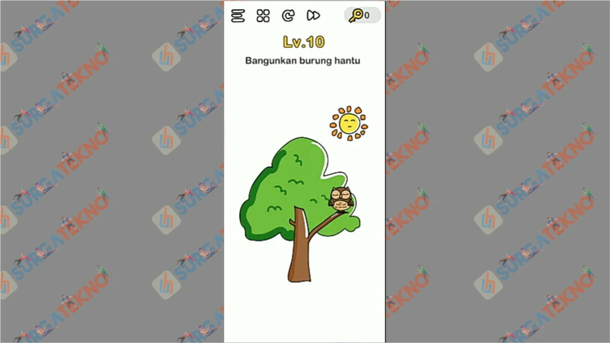 Bangunkan Burung Hantu Brain Out