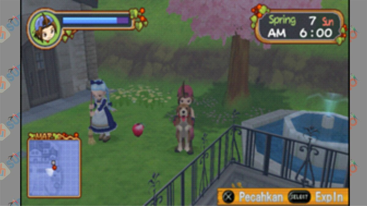 Letak #5 Power Berry HOLV - Cara Mendapatkan Power Berry Harvest Moon Hero Of Leaf Valley