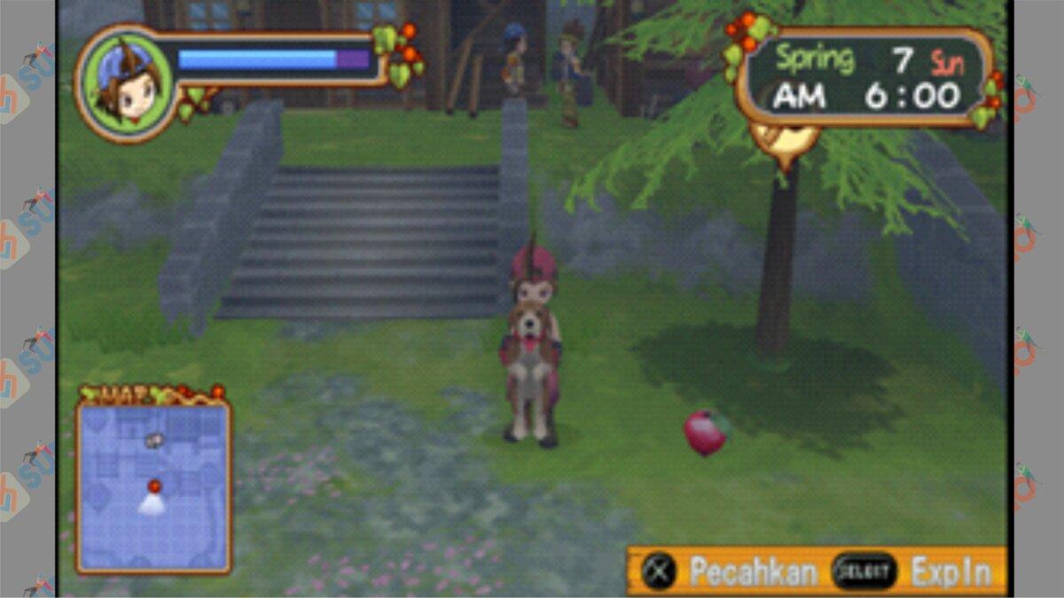 Letak #8 Power Berry HOLV - Cara Mendapatkan Power Berry Harvest Moon Hero Of Leaf Valley