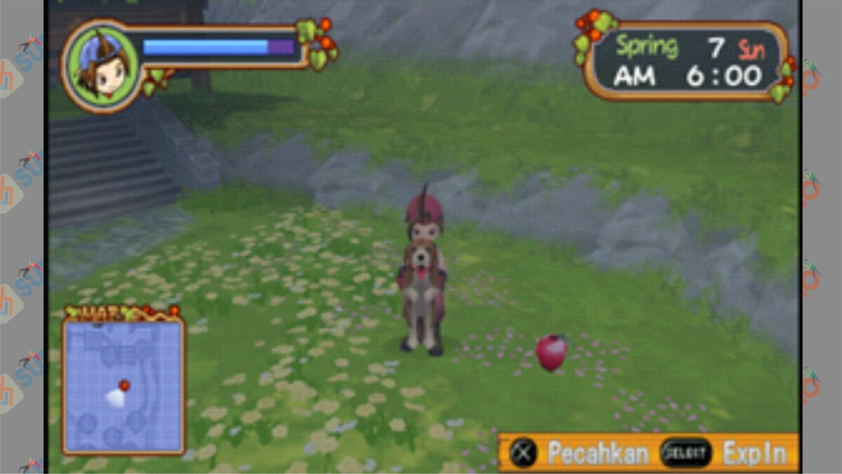 Letak #9 Power Berry HOLV - Cara Mendapatkan Power Berry Harvest Moon Hero Of Leaf Valley