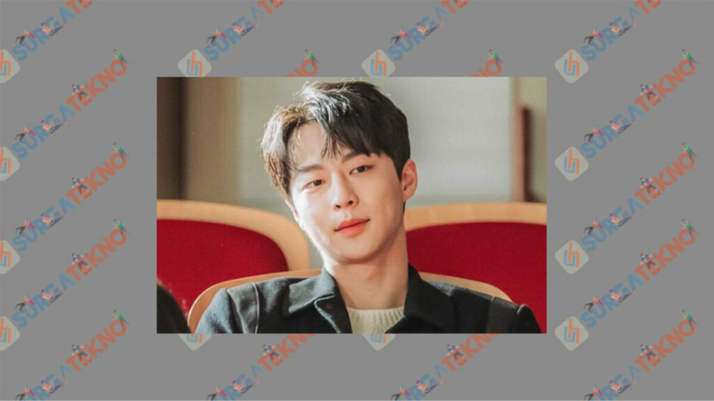 Bae In Hyuk sebagai Gye Sun Woo - Daftar Pemain My Roommate is A Gumiho