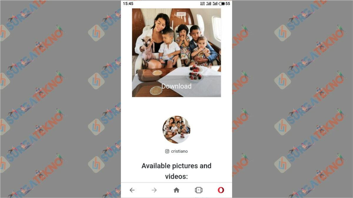 Langkah terakhir - Cara Download Foto Profil Instagram