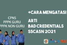 Arti Bad Credentials di SSCASN 2021