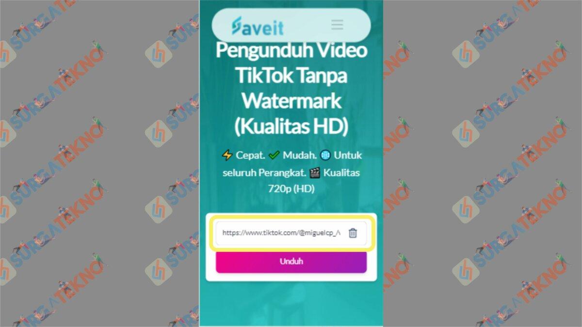 Paste Link pada Kolom yang Disediakan - Cara Download Video TikTok Tanpa Watermark