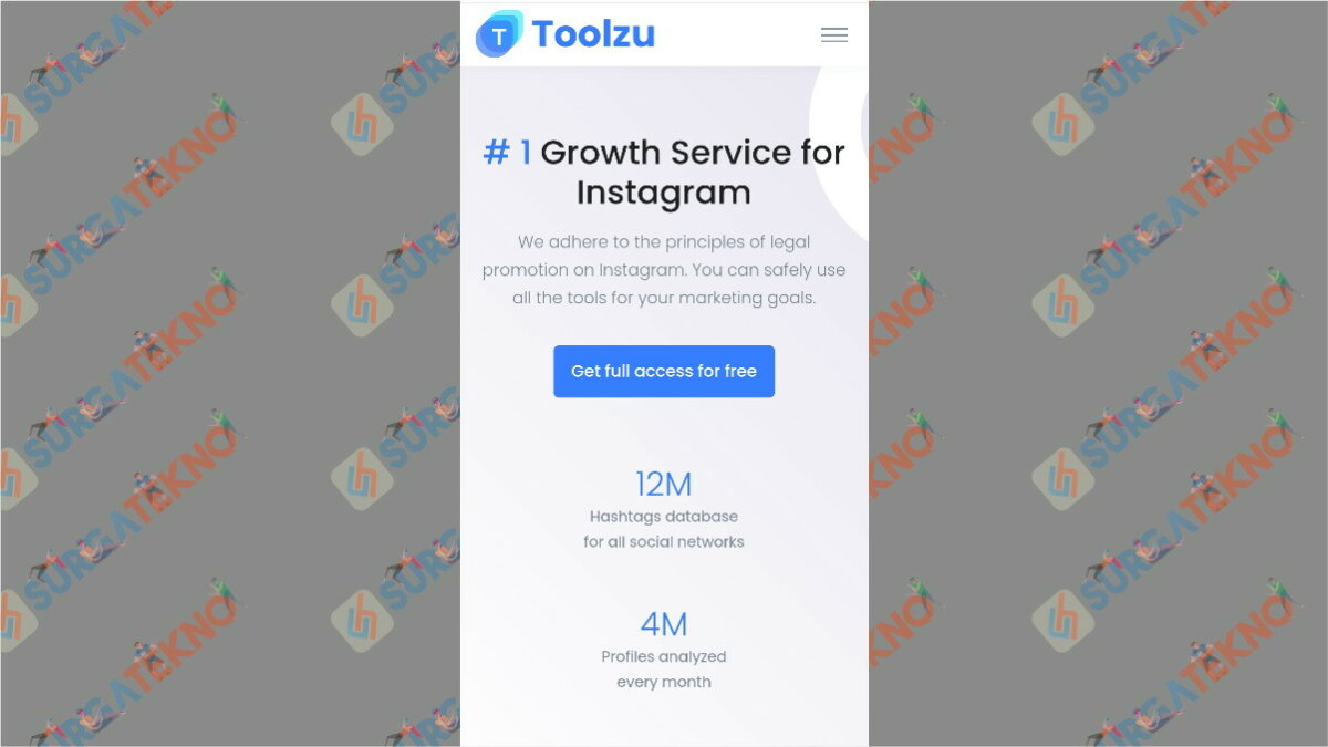 toolzu.com - aplikasi pengunduh video Instagram